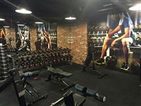 Dyshemeja per fitness me kualitet te larte