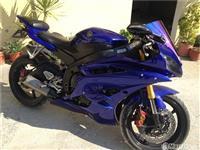 Yamaha r6 600cc blu -07