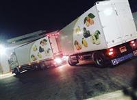 Shes kamion + rimorkio