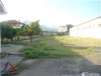 Magazine me qera ne Elbasan