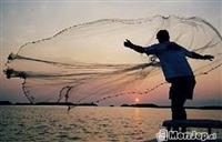 Rrjete peshku plumci