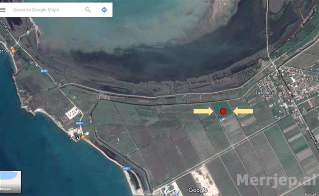 Toke-10000-m2-Sektor-Rinia-Durres