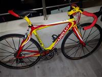 Shitet biciklet kursi Pinarello Prince