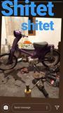 Shitet moto