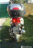 Grand Dink 250 cc -04
