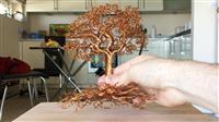 Peme te ndertuara me tel.
