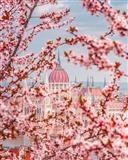 Vjeshtë në Budapest, 4 Ditë €299, Nisje më 6 Tetor