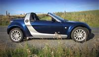SMART ROADSTER OKAZION