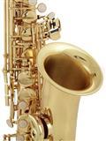 Startone SAS-75 Altro Saxophone