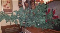 peme e vitit te ri