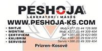 "NTSH ""PESHOJA"" PESHORE ELEKTRONIKE ""Esit""me 6 vi.."