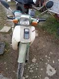 Motorr Papaq