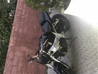 Shitet Kawasaki