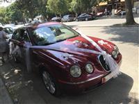 Shitet Jaguar