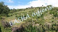 Shitet 2000m2 toke are, 3km nga qyteti i Elbasanit