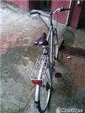 OKAZION!! Biciklet 28 italiane ndrrohet me mtb