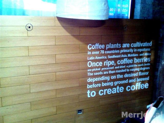 -oferte--Strukture--Veshje-muri-bar-kafe-
