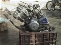 grup motorri
