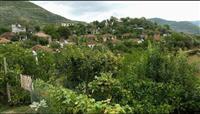 Shtepia ne nje fshat te Beratit