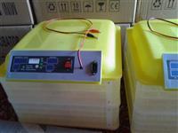 Inkubator automatik