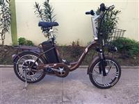 Biciklet me bateri akull i ri. I ardhur nga gjerma