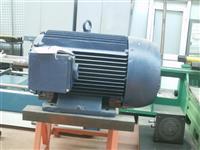 Elektromotor 275kw
