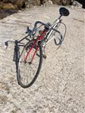Biciklete ciklizmi Schwinn