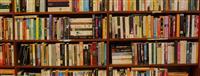 Blej libra te perdorura