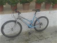 Biciklet gjermane passat capriolo super cmim