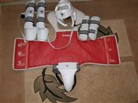 Mbrojtje Taekwondoje