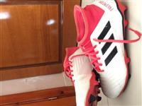 Adidas predator 17.3
