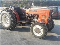 Fiat frutetto  570