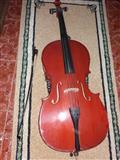 Shitet violinceli