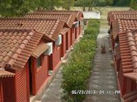 Gabina druri bashke me verande 20.000euro