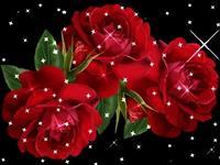 Lule te ndrshme