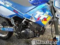 Yamaha TT600 -02