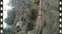 Toke dhe shtepi ne Elbasan