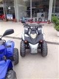 Shitet motor ATV Aeon Cobra 125cc