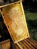 Mjalt blete 100 % natyral