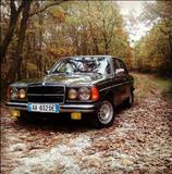 Mercedes-Benz koleksioni vitit 82