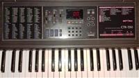 Organo Casio CTK 550