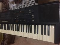 Organo PA 40 oriental